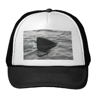 Shark Fin Trucker Hat