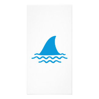 Shark fin picture card
