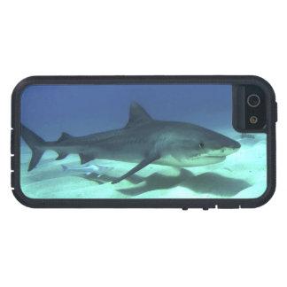 Shark Fish Ocean Tropical Ocean Destiny Gifts iPhone 5 Cover