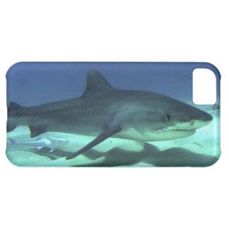 Shark Fish Ocean Tropical Ocean Destiny Gifts iPhone 5C Cases