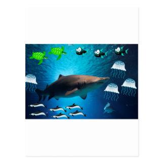 Shark Fish Turtles Dolphins Tropical Ocean Water Postcard