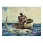Shark Fishing, 1885 Postcard
