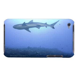 Shark in ocean, low angle view iPod touch cover