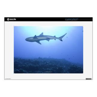 Shark in ocean, low angle view laptop decals