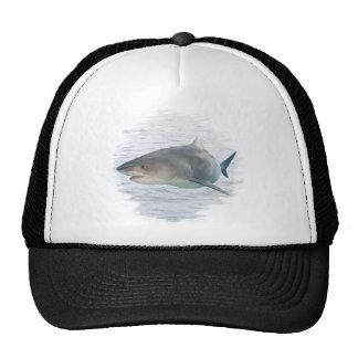 Shark in water trucker hat