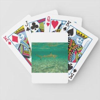 Shark in will bora will bora bicycle playing cards