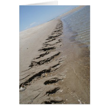 Beach Themed Shark Island  North Carolina Outer Banks Card