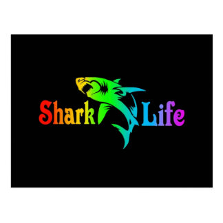 Shark Life Postcard