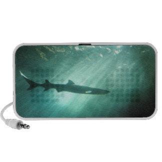 Shark Obyss Laptop Speaker