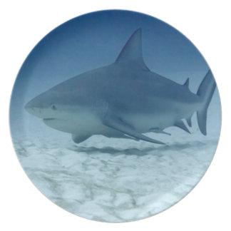 Shark Dinner Plate
