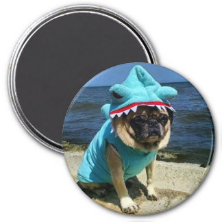 Shark Pug Magnet