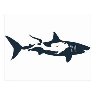 shark scuba diver diving hai tauchen postcard