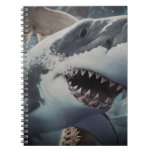 Shark Spiral Note Books