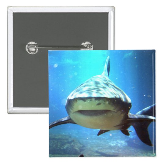 Shark Square Pin