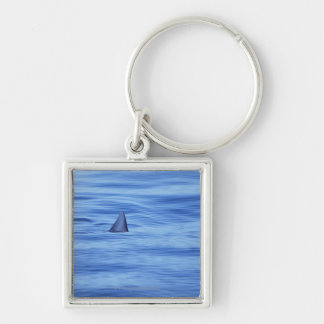 Shark swimming in ocean water keychain