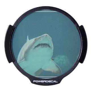 Shark Teeth LED Car Decal