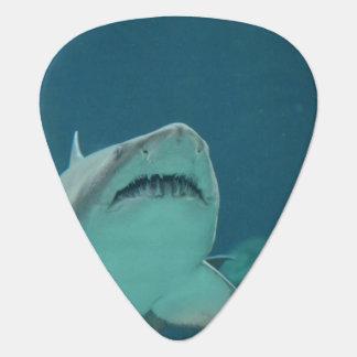 Shark Teeth Pick