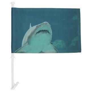 Shark Teeth Car Flag