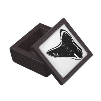 Shark tooth collecting box