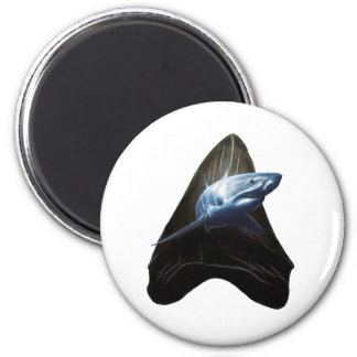 Shark Tooth 2 Inch Round Magnet