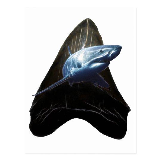 Shark Tooth Postcard