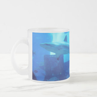 Shark underwater! frosted glass coffee mug