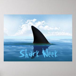 Shark Week Posters   Z...