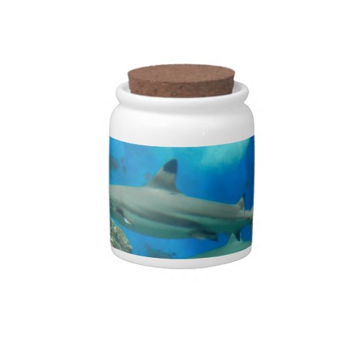 Shark with Reef  Candy Jar
