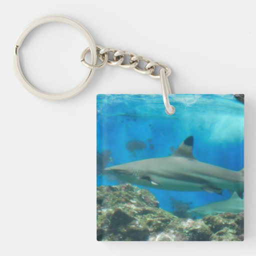 Shark with Reef  Keychain Square Acrylic Key Chains