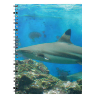 Shark with Reef Notebook