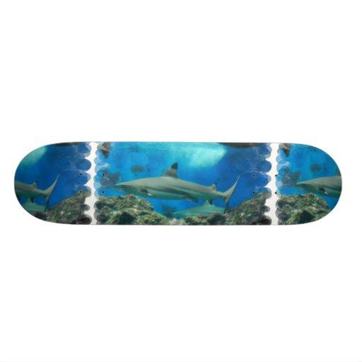 Shark with Reef Skateboard