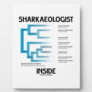 Sharkaeologist Inside (Shark Order Lineage) Display Plaques