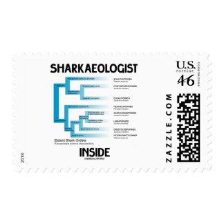 Sharkaeologist Inside (Shark Order Lineage) Stamps