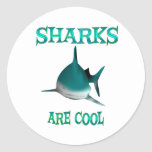 Sharks are Cool Stickers