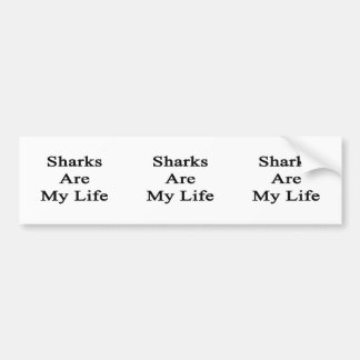 Sharks Are My Life Bumper Stickers