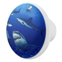 Sharks Ceramic Cabinet Knob