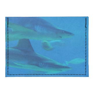 Sharks Tyvek® Card Wallet