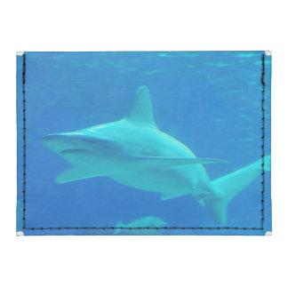 Sharks Tyvek® Card Case Wallet