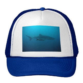 Sharks Fish Ocean Water Tropical Beach Peace Love Trucker Hat