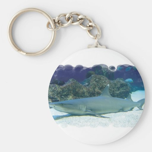 Sharks in Coral Reef Keychain