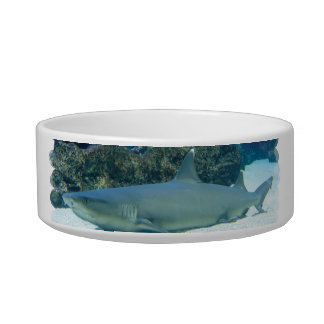 Sharks in Coral Reef Pet Bowl