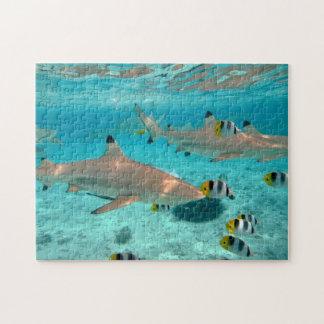Sharks in the Bora Bora lagoon Jigsaw Puzzle
