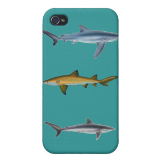Sharks iPhone 4/4S Case