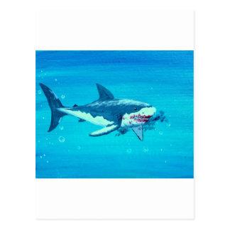 Shark's lunch mustache postcard