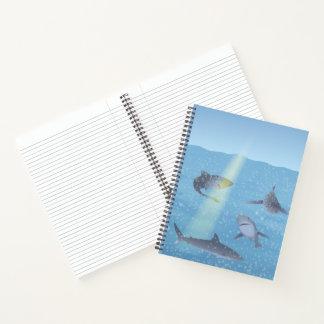 Sharks Notebook