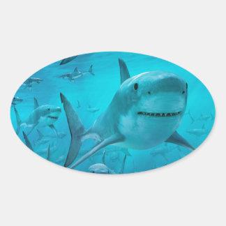 Sharks Oval Sticker