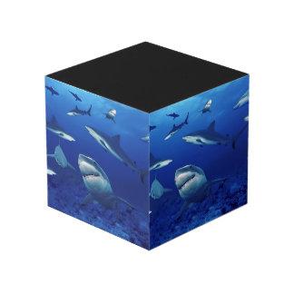 Sharks Photo Cube