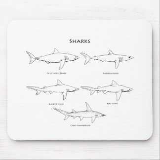 Sharks Species Logo Mouse Pad