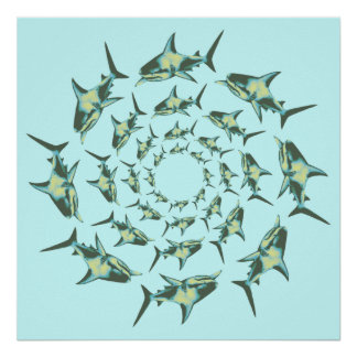 sharks swimming in circles poster