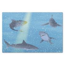 Sharks Tissue Paper